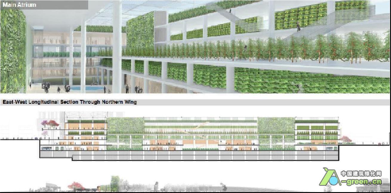 垂直农场设计作品欣赏