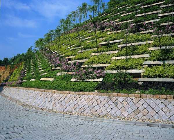 斜坡的景观设计