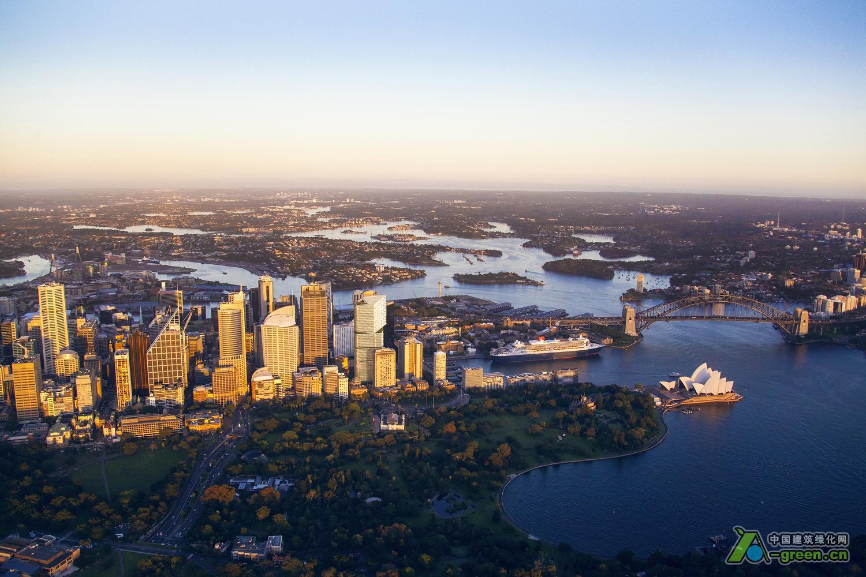 澳大利亚悉尼大桥街50号摩天大楼