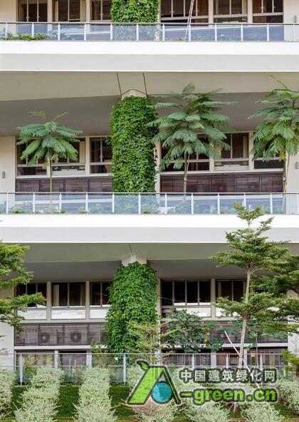 70平米花园设计效果图