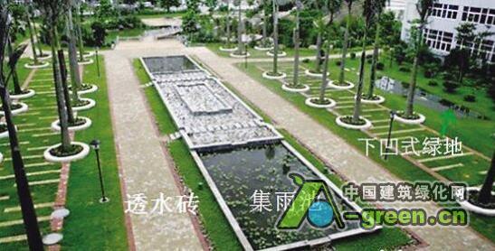 青岛首条海绵城市示范整治道路本周启用