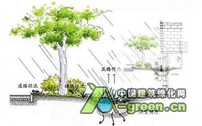 建设海绵城市 促进人水和谐(图)