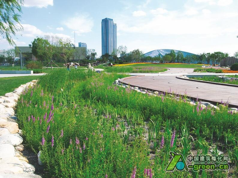设计单位:安博戴水道 所在国家:中国 作品地址:天津   目前世界上很多国家和地区已经认识到了雨洪管理的价值,采用各种技术、设备和措施对雨洪进行利用、控制和管理。天津作为一个资源性缺水和饱受内涝之苦的城市,在旧城区改造和重新规划开发时对排水防涝系统提出了更高的要求。本文详细介绍了天津文化中心生态排水防涝系统的原理、组成和设计过程。这一工程遵循水敏城市设计理念,在设计和应用中得到较好的实践和验证。   项目概况   天津位于中纬度亚欧大陆东岸,北温带东亚季风盛行的地区,位属暖温带半湿润大陆季风型气候,四季