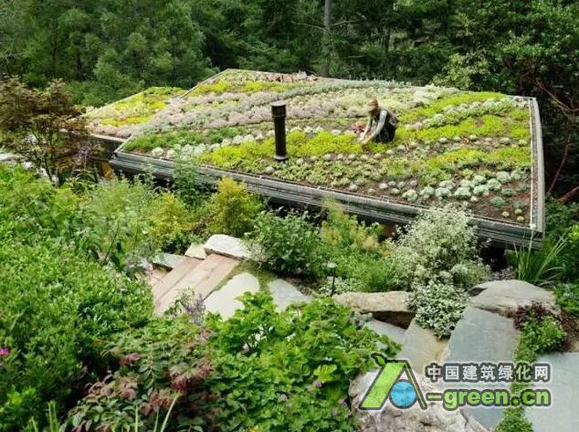 绿色屋顶,也称为植被屋顶、生活屋顶,这一设计灵感来自于欧洲。设计师在屋顶上使用草、植物和苔藓等美化屋顶,也成为了现在的潮流,不仅美观,更缘于实用。 它的好处不可否认,这样的屋顶因为植被和土壤的关系能降低周边的气温,还能吸收二氧化碳。绿色屋顶是冬暖夏凉的绿色空调,据统计,这样的屋顶在夏天白天的温度比传统屋顶低30%,而到了冬天,绿色植被起到隔离的作用,有助于保持室内热量。  还有很多的好处比如利于排水,绿色屋顶能有效的吸收水分,对雨水加以过滤。还能遮挡紫外线辐射,延长屋顶的寿命,虽然这样的花费可不低